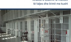 Falja në Kosovë, Analizë e zbatimit të institutit të faljes dhe lirimit me kusht - Janar 2014